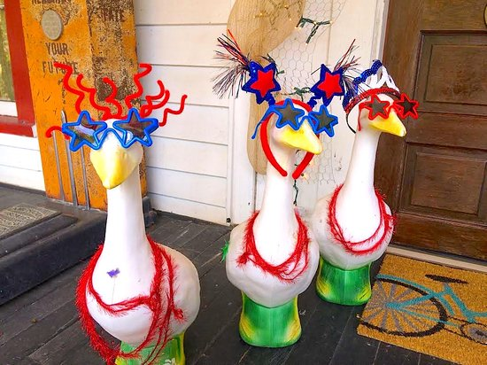 St. Marys, Geórgia: Geese are ready for the party! Bring on the brew!