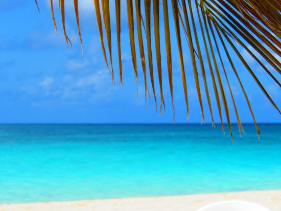 The Valley, Anguilla: Just another day in paradise....our view from the SunShine Shack