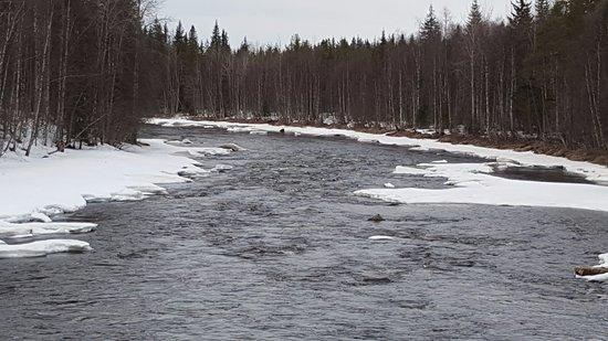 Original Sokos Hotel Vaakuna,Rovaniemi: Parque Vikakongas a 20 km. de Rovaniemi