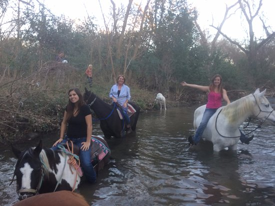 Lockhart, TX: In another ten feet those horses will be swimming.  It's SO fun to go swimming on horseback!