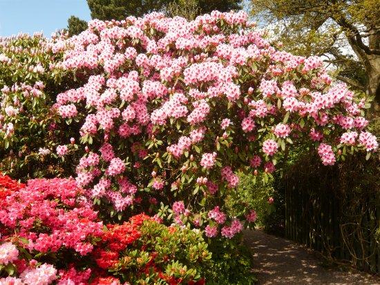 Lea Gardens, Matlock