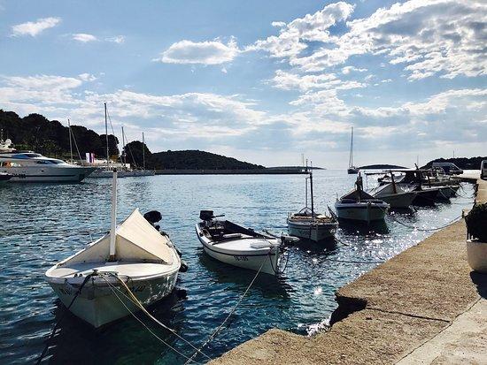 Solta Island, Croatia: photo6.jpg