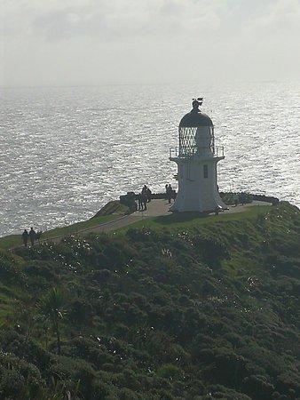 Kaitaia, New Zealand: IMG_20170518_130615_large.jpg