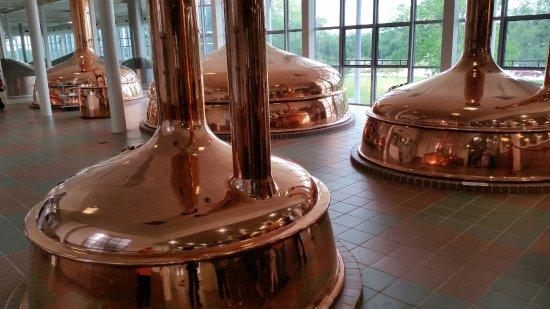 Shiner, TX: Copper beer vats