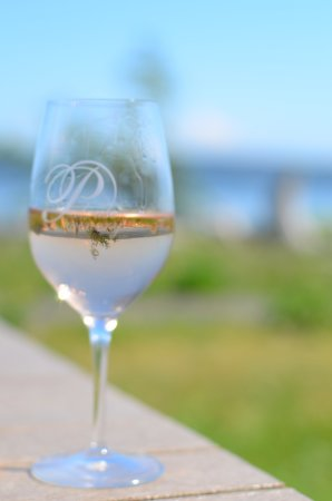 Vashon, Вашингтон: Glass of wine at Palouse winery