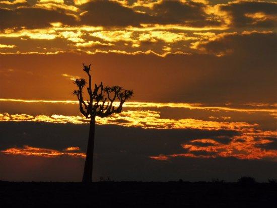 Ciudad del Cabo Central, Sudáfrica: First evening experience