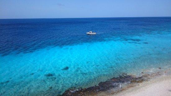 Kralendijk, Bonaire: Mar transparente
