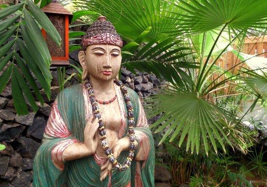 Makawao, HI: SAM_1064_large.jpg