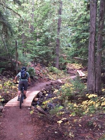 Nelson, Canadá: Great local biking trails