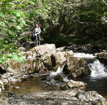 Penrith, UK : Natur