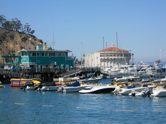 Catalina Island Express Newport Beach