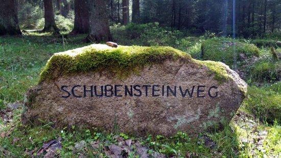 Sankt Andreasberg, Alemania: Wanderung rund um das Große Torfhausmoor.