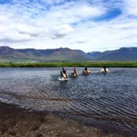 Varmahlid, Islandia: When booking 2 or 3 hour tour you might go swimming :)