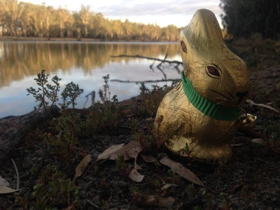 Easter on the Murray River - outside of Robinvale VIC