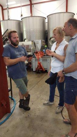 Martinborough, New Zealand: Winenmaker Joel, at Murdoch James Estate explaining the importance of grape selection to making