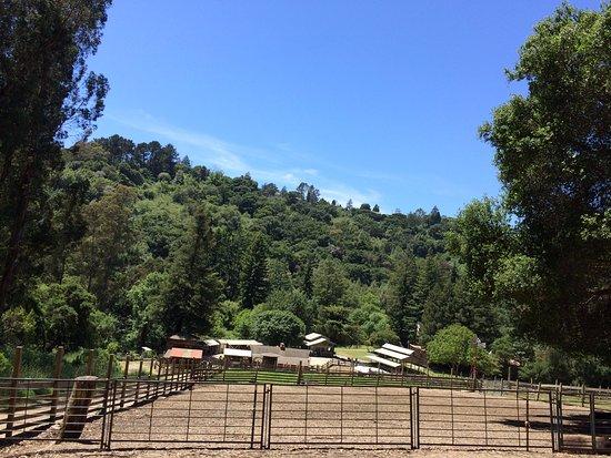Berkeley, CA: Farm