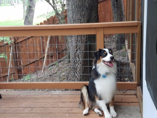 Wimberley, Τέξας: Our dog loved hanging out on the fenced deck with us