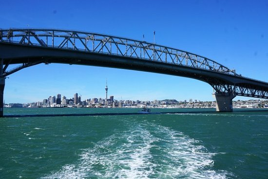 Fullers Auckland Harbour Cruise: Auckland's cityscape framed by Auckland Bridge