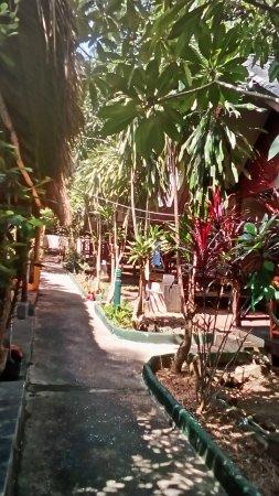 The Grand Tree Resort Bild