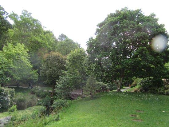 Jardin du Conservatoire Botanique National de Brest : la flore et les arbres.