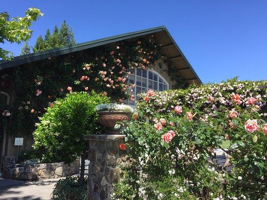 Geyserville, Californië: photo0.jpg