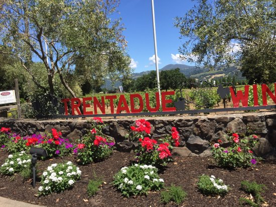 Geyserville, Californië: photo5.jpg