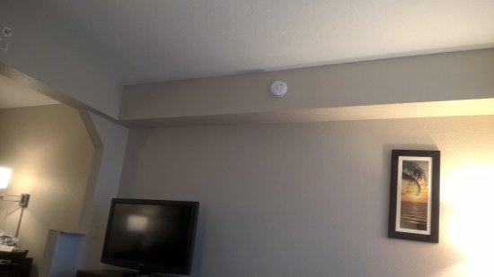 Comfort Suites Maingate East: Quarto