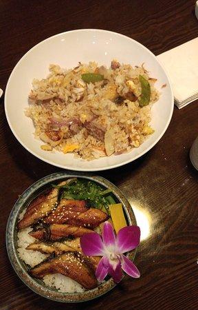 Mentor-on-the-Lake, OH: hibachi Ninja special fried rice; unagi donburi (eel over rice)