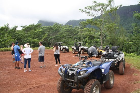 Moorea, French Polynesia: Albert ATV Tour