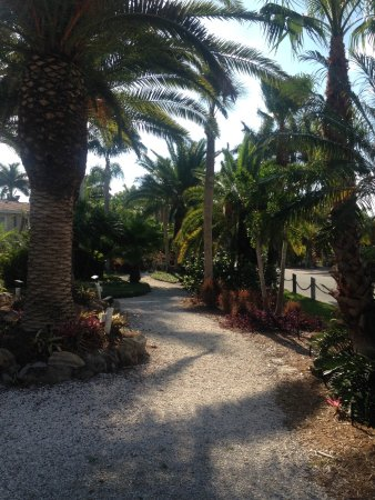 Tropical Beach Resorts: Garden path toward beach