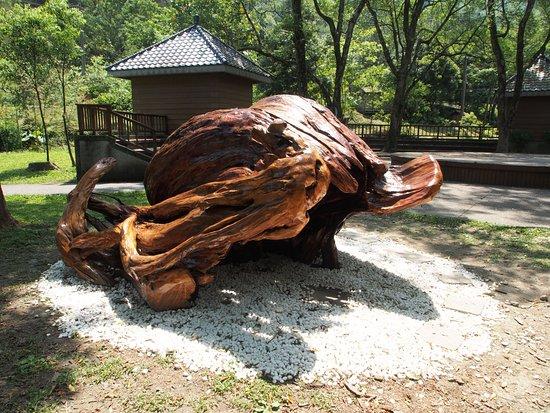 Hualien County, Taiwan: Tree trunk sculpture