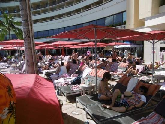 Sheraton Waikiki: Impossible to get a sun lounge around the adults only pool area