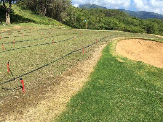 The Dunes at Maui Lani Golf Course: photo0.jpg