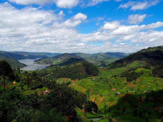 Kisoro, Oeganda: photo7.jpg
