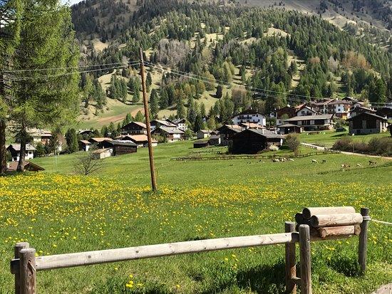 appena fuori dal campeggio, Bellamonte e l'alpe Lusia