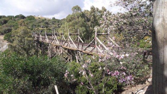 Selwo Aventura: Uno de los puentes