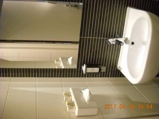 Hotel Amsterdam - De Roode Leeuw: lavabo del bagno con a destra il WC e a sinistra la cabina doccia