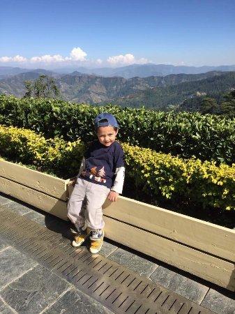 Wildflower Hall, Shimla in the Himalayas: photo0.jpg