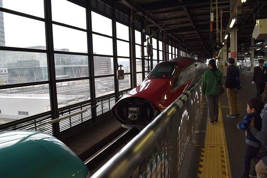 Foto de Tohoku