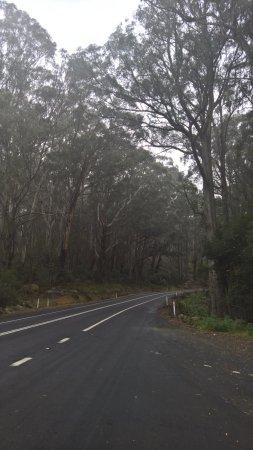 Bega, Australia: more scenic