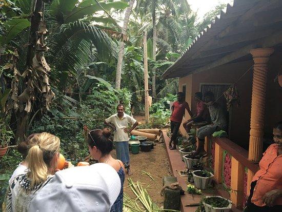 Mawanella, Sri Lanka: village walk