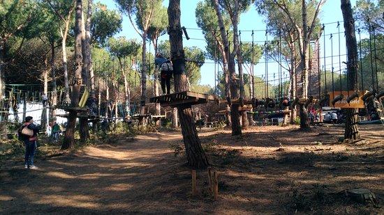 Parco Avventura Riva dei Tarquini