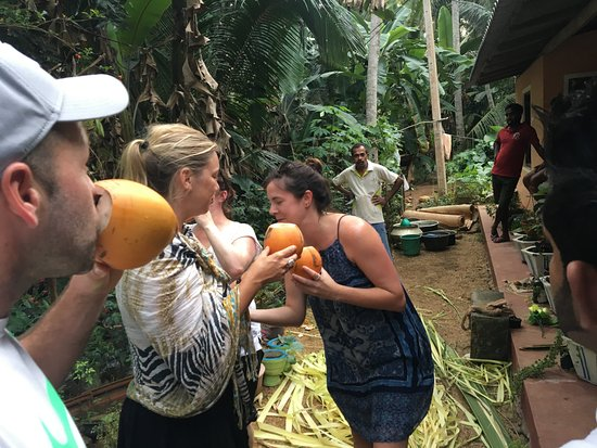 Mawanella, Sri Lanka: drinking king coconut in village walk