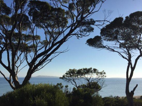 Port Lincoln, Australia: photo7.jpg