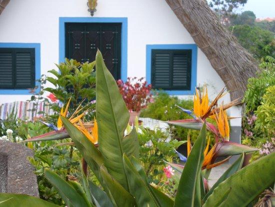 Santana house Madeira