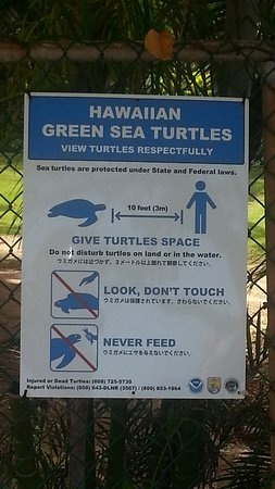 Kapolei, HI: Shame people do not read these or maybe they are just ignorant to it?