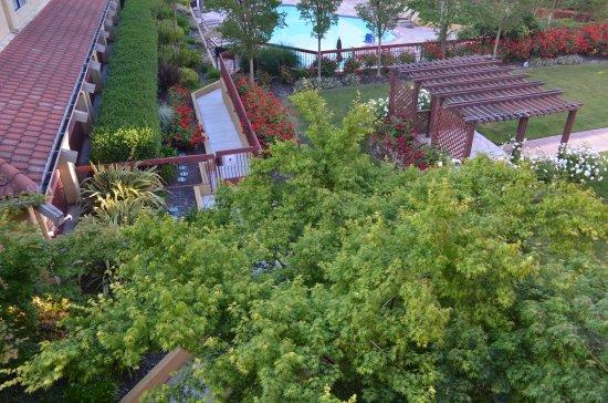 Rohnert Park, CA: Beautiful gardens around the pool - well maintained
