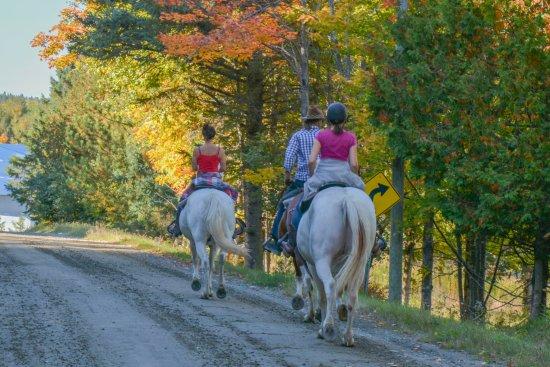 Piopolis, Canadá: randonnée d'automne