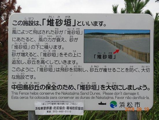 Nakatajima Beach Bild