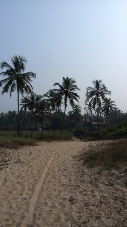 Coconut Grove : photo7.jpg